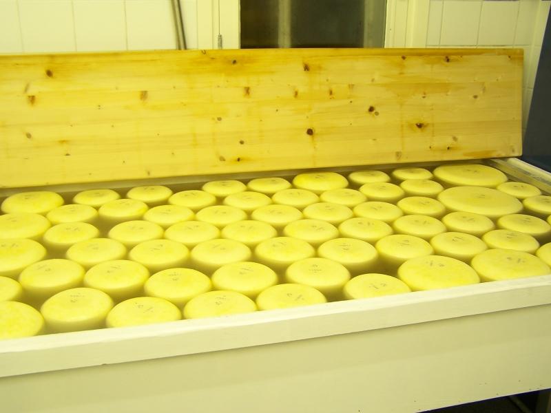 Images For Pasteuriseren Van Melk